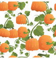 pumpkin seamless pattern background autumn harvest vector image vector image