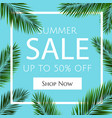 sale banner with palm trees vector image vector image