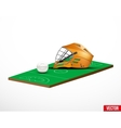 Symbol of a lacrosse helmet and field vector image vector image