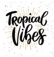 tropical vibes lettering phrase on light vector image vector image