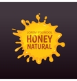 Yellow honey blot isolate vector image