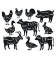 butcher shop scheme meat cuts pork chicken vector image