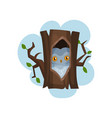 owl sitting in hollow of tree hollowed out old vector image