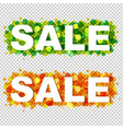 sale design text vector image vector image