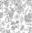 seamless pattern with avocado tomato pepper vector image