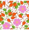 Seamless pattern with rose hip vector image
