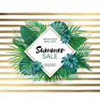 summer sale concept summer background vector image vector image