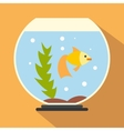 Aquarium flat icon