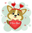 congratulations on valentine s day cute corgi vector image vector image