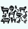 farm animals logo vintage textured templates vector image vector image