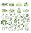 organic food fresh ingredients 100 percents set vector image