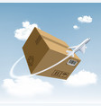 plane flies around the cardboard box vector image