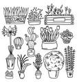 set indoor plants vector image