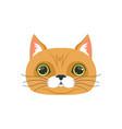 cute brown cat head funny cartoon animal vector image vector image