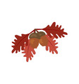 oak leaf and acorn vector image vector image