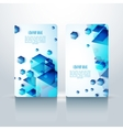 Professional and designer vesrtical business card vector image