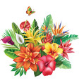 arrangement from tropical flowers vector image vector image
