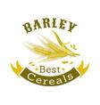 barley grain badge for food packaging design vector image vector image