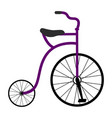 classical bicycle icon vector image