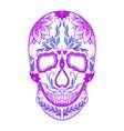 color neon of a sugar skull th vector image