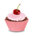 Cupcake With Cream And Cherry vector image vector image