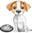 dog Jack Russell Terrier breed vector image vector image