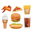 fast food realistic lunch pizza chicken hamburger vector image