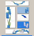 muscari set with visitcards and greeting templates vector image vector image