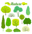 set spring or summer abstract stylized trees vector image