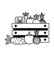 vegetables on box vector image