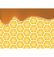 Abstract texture of honeycomb vector image