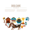 Basset hound care infographic concept vector image vector image