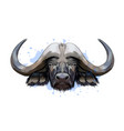 bison buffalo head portrait from a splash of vector image vector image