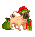 Christmas theme with cute dog and gift boxes vector image