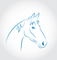 Hand drawn head horse vector image vector image