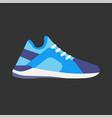 modern sneaker for everyday wear vector image
