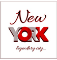 New York city Typography Graphic vector image vector image