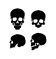 skulls front and side view silhouette vector image