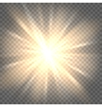 Sun rays on transparent background vector image