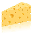 cheese 03 vector image vector image