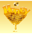Honey sign vector image