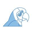 macaw amazon bird brazil wildlife image vector image vector image