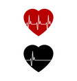 red and black heart with palpitation red vector image vector image