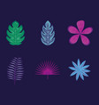 set of tropical leafs and flowers vector image