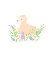 adorable little lamb cute sheep animal lying on vector image vector image