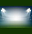 blank football field on the stadium sports vector image vector image