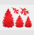 collection of christmas trees and branches vector image
