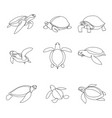continuous line turtle set vector image vector image
