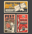 pest control insects and rodents extermination vector image vector image