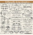 set of vintage calligraphic design elements vector image